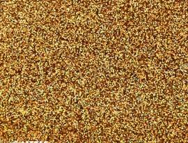 Holographic Amber Premium Glitter