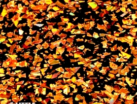 Autumn Shards Acrylic Close Up